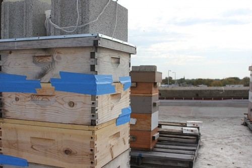 Apiary, five stories above Diversey