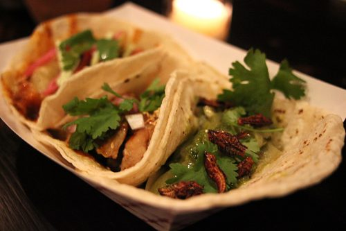 Tacos, garnished with chapulines